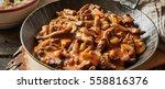 banner of beef stroganoff food. ... | Shutterstock . vector #558816376