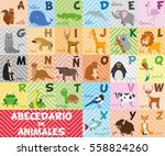cute cartoon zoo illustrated... | Shutterstock .eps vector #558824260