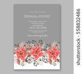 wedding invitation floral... | Shutterstock .eps vector #558832486