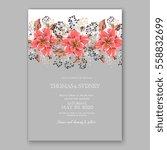 wedding invitation floral... | Shutterstock .eps vector #558832699
