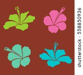 trendy floral vector collection ... | Shutterstock .eps vector #558850936