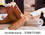 massage of human foot in spa... | Shutterstock . vector #558875380
