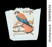 Small photo of Thailand - Circa 1999: American kestrel on american postage stamp, Circa 1999.