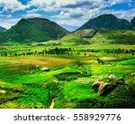 madagascar landscape | Shutterstock . vector #558929776
