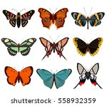 realistic butterfly and moth... | Shutterstock .eps vector #558932359