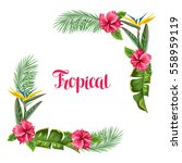 frame with tropical leaves and... | Shutterstock .eps vector #558959119