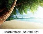 Stock photo sunset on beach anse takamaka mahe island seychelles 558981724