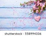 fresh pink  sakura flowers and  ... | Shutterstock . vector #558994336