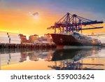 logistics and transportation of ... | Shutterstock . vector #559003624