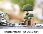 trees growing on coins money... | Shutterstock . vector #559019584
