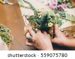 woman's hands making flower... | Shutterstock . vector #559075780