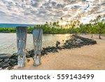 ki'i in pu'uhonua o honaunau... | Shutterstock . vector #559143499