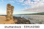 ki'i in pu'uhonua o honaunau... | Shutterstock . vector #559143580