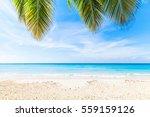 Tropical Beach Background ...