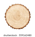 warm wooden tree section with... | Shutterstock . vector #559162480
