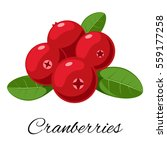 Cranberries Isolated Icon....