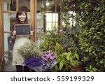 flower shop store florist... | Shutterstock . vector #559199329