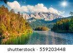 sunny summer morning on the... | Shutterstock . vector #559203448