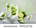 cold and refreshing infused... | Shutterstock . vector #559212736