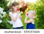 happy little sisters wearing... | Shutterstock . vector #559257604