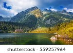 poprad lake famous and very... | Shutterstock . vector #559257964