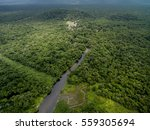 aerial view of a tropical... | Shutterstock . vector #559305694