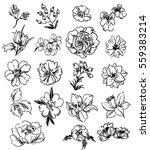 flower set | Shutterstock . vector #559383214
