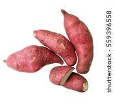 sweet potato   yam isolated on... | Shutterstock . vector #559396558