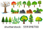 different types of trees ... | Shutterstock .eps vector #559398700