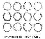 hand sketched vector vintage... | Shutterstock .eps vector #559443250