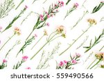 floral pattern with pink and... | Shutterstock . vector #559490566