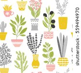 house plant seamless color... | Shutterstock .eps vector #559494970