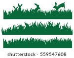 vector rabbits in green grass... | Shutterstock .eps vector #559547608
