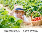 happy adorable little kid boy... | Shutterstock . vector #559549606