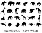 a safari african animal... | Shutterstock .eps vector #559579168