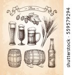 beer set. vector illustration... | Shutterstock .eps vector #559579294
