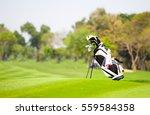 golf bag is located on fairway... | Shutterstock . vector #559584358