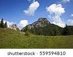 beautiful scenery on the little ... | Shutterstock . vector #559594810
