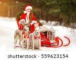 girl at christmas on a sleigh... | Shutterstock . vector #559623154