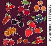 berry stickers. raspberry cloud ... | Shutterstock .eps vector #559642390