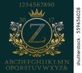 golden wavy patterned letters... | Shutterstock .eps vector #559656028