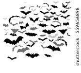 vector bats fly | Shutterstock .eps vector #559656898