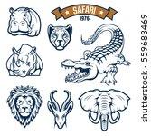 african safari hunt animals... | Shutterstock .eps vector #559683469