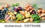 various kinds of vegetables  ... | Shutterstock . vector #559796488