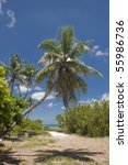 Bahia Honda State Park In The...