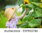 cute little girl wearing straw... | Shutterstock . vector #559903780