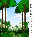 rainforest vector illustration. ... | Shutterstock .eps vector #559981279