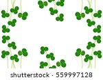 green clover leaves isolated on ... | Shutterstock . vector #559997128