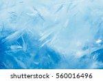 ice background  blue frozen... | Shutterstock . vector #560016496