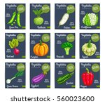 vegetables price cards. farm... | Shutterstock .eps vector #560023600